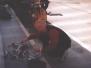Elba 2003